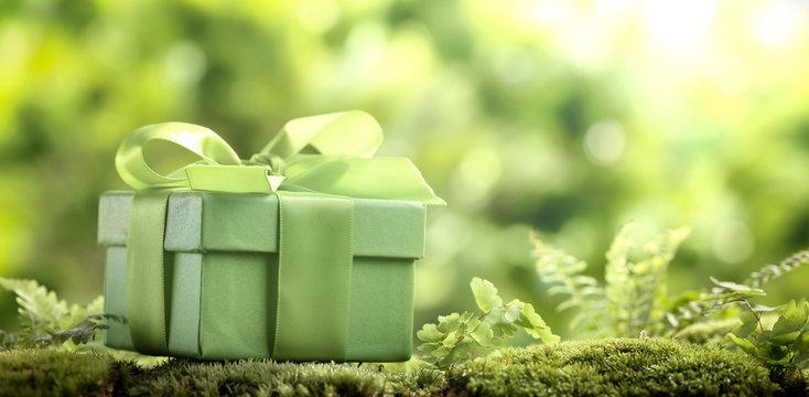 Green gift box on moss