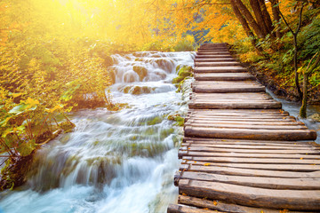 Poster Jaune de seuffre Scenic waterfalls and wooden path - picturesque autumn