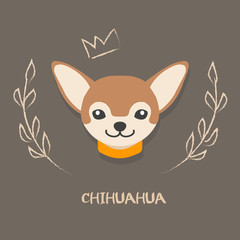 Funny chihuahua vector illustration. Cute cartoon  portrait of a dog for decoration and design