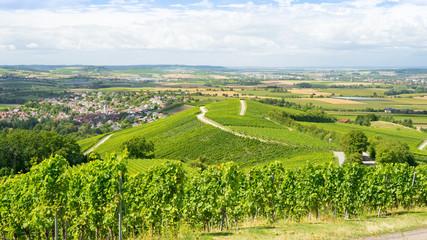 Weinberge in Süddeutschland