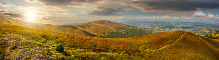 panoramic summer landscape in Carpathians at sunset