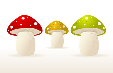 Set of Three Different Mushrooms.
