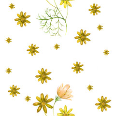 Watercolor pattern of a cosmos flowers