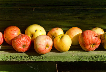 apples, apple, fruit, red, background, fresh, autumn, fall