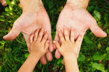 Fototapeta hands grandfather and grandson obraz
