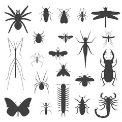 Silhouettes, icons of different insects.