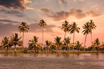 Kerala backwaters with palms on sunset