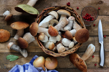 Still life with mushrooms, top view.
