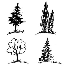 Trees, drawing by marker. Simple hand drawn sketches. Black line isolated on white