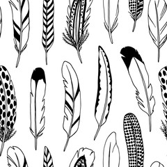 Feather seamless pattern