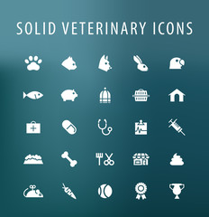 Set of 25 Universal Veterinary Icons. Isolated Elements.