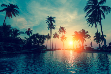 Fantastic sunset, palm trees in tropical beach. Wall mural