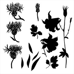 Vector silhouettes of flowers and leaves