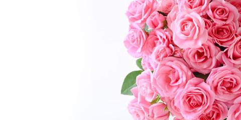 白背景にピンクのバラの花束
