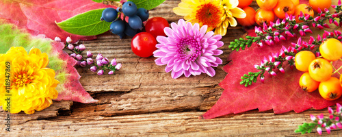 Herbst  Dekoration auf Holz Stock photo and royalty