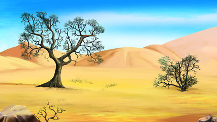 Trees on the Edge of the Desert in a Summer Day