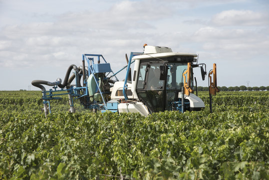 Saint Estephe Medoc France August 2016 - A straddle tractor used for spraying vines in the St Estephe region of the Haut-Medoc area of France