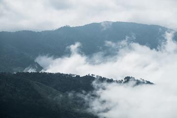Cloud fog motion through mountain at doi inthanon, chiang mai
