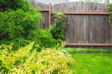Wall Mural - Wooden fence near fresh green lawn