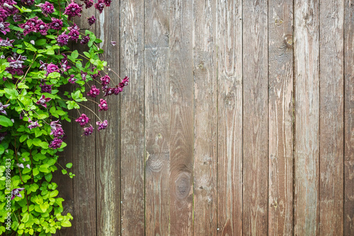 Wall mural Wooden wall with decorative flowers