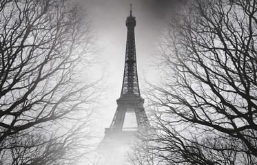 Autumn in Paris - black and white picture. Mysterious picture.