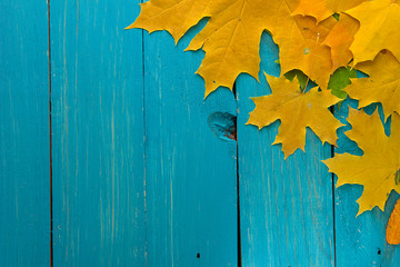 Autumn leaves over turquoise wooden background with empty space