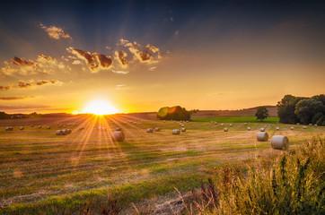 Sommer, Landschaft mit Sonnenuntergang Wall mural