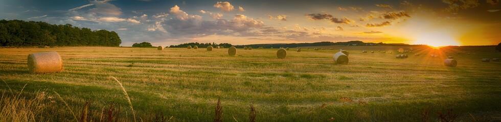 Landschaft im Sommer, Sonnenuntergang, abgeerntete Getreidefeld mit Strohballen, Panorama
