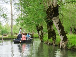 Promenade en barque dans le marais poitevin (France)