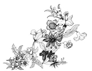 Summer garden blooming flowers monochrome vector illustration.