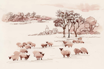 Watercolor summer landscape with sheep