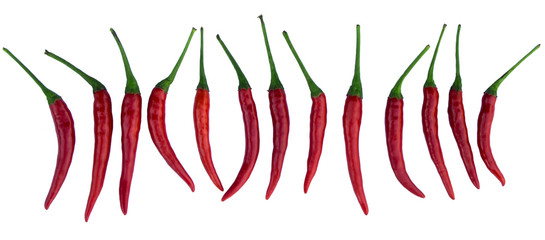 Panel of red chili pepper on white background