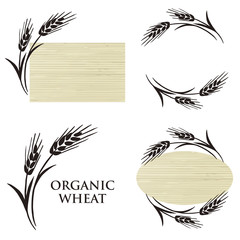 Set of Organic Wheat logo or label design elements.