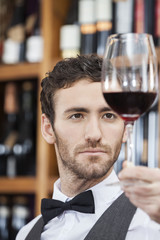 Closeup Of Bartender Examining Red Wine