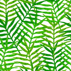 Tuinposter Tropische Bladeren Vector seamless pattern from green leaves on the white backgroun