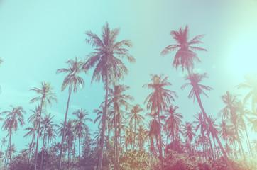 coconut tree Vintage