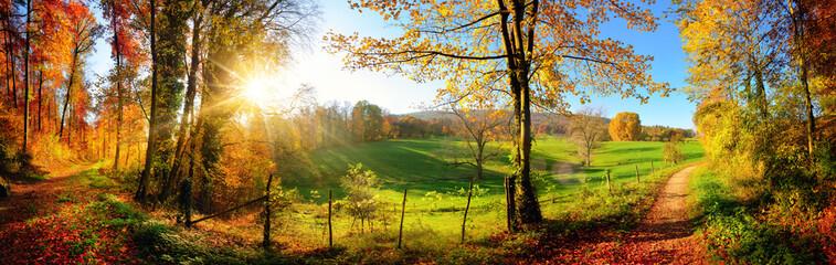 Magiczny krajobraz jesienią: słoneczna panorama wiejskiej idylli