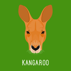 Abstract cartoon kangaroo portrait. Nature, wild animal theme.