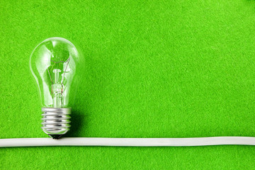 Concept ecology. Light bulb on green background with copy space