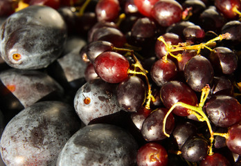 Purple plums and grapes 3