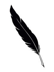 Vector drawing dark bird feather