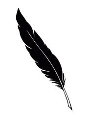 Vector drawing dark bird feather