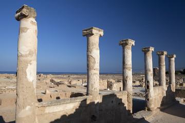 Mosaiques romaines