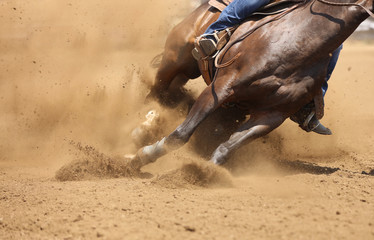 A barrel racing horse skids around the corner throwing up dirt.