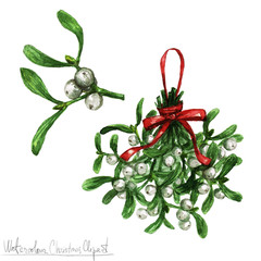 Watercolor Christmas Clipart - Mistletoe