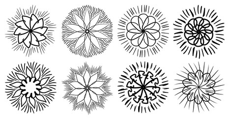 Set Of Abstract Flowers, Buds, Sketch