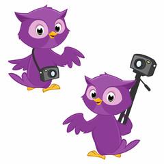 owl photographer symbolizing  panoramic  photography
