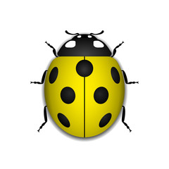 Ladybug small icon. Yellow lady bug sign, isolated on white background. 3d volume design. Cute colorful ladybird. Insect cartoon beetle. Symbol of nature, spring or summer. Vector illustartion