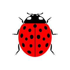 Ladybug small icon. Red lady bug sign, isolated on white background. Wildlife animal design. Cute colorful ladybird. Insect cartoon beetle. Symbol of nature, spring, summer. Vector illustartion