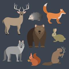 Forest animals vector illustration.